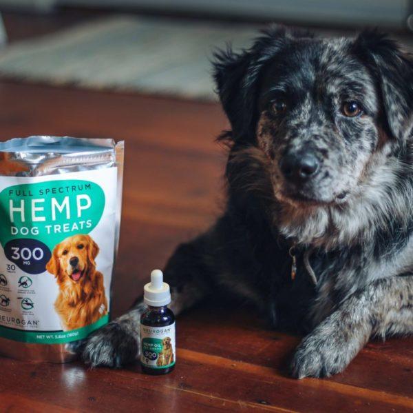 neurogan cbd hemp oil for pets